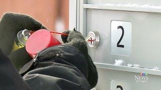 видео mailboxes network