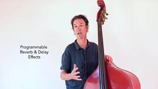 Frans van der Hoeven, Double Bass, Acoustic Box 2 demo