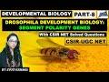 SEGMENT POLARITY GENES(PART-8) | ZYGOTIC/SEGMENTATION GENES OF DROSOPHILA | CSIR NET| DEV BIO