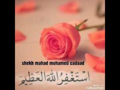 Dhawaqa Saxda Ah Ee Istiqfaarta Sheekh Mahad Cadaad