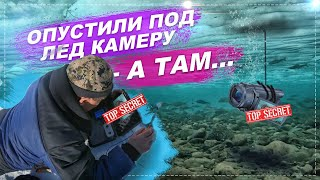 Опустили камеру в лунку и удивились Сибирская река Абакан закрыта для рыбалки