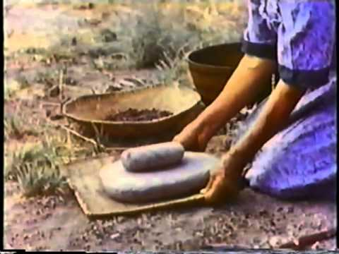 Pine Nuts the Movie (Paiute, Shoshone & Washo pine nut harvesting and preparation)