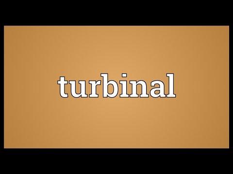 Header of turbinal