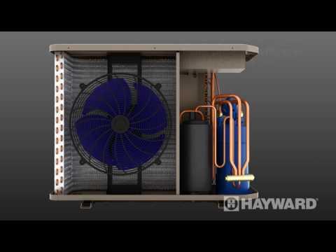 Les thermopompes de Hayward - CA