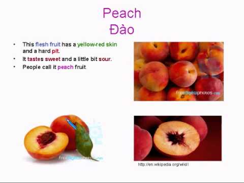 Learning Basic English Lesson 12: 5 Words per day with Teacher PHil #2 (Fruits)