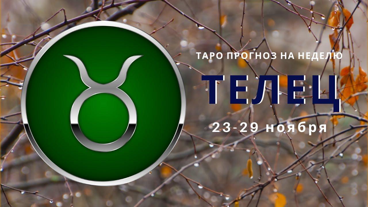 Таро прогноз на неделю ТЕЛЕЦ с 23 по 29 ноября 2020г