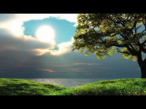 Ronny K - Morning Light (Intro Mix)