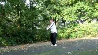 Yang Stil Tai Chi Übungen - Mähne des Wildpferds teilen/ schützen-links