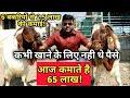 बकरी पालन से 65 लाख की कमाई!How to start a goat farming in india।goat farming Success story