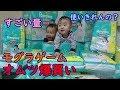 【オムツ爆買い】モグラゲームって何?男女双子生後11ヶ月Mix twins bought up a diaper
