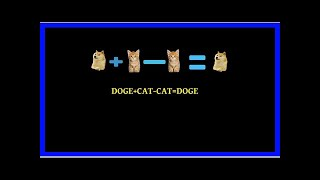 Plz No Cat: The Future of Crypto Disputes Is Being Decided By Doges