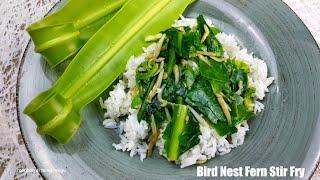 Bird Nest Fern Stir Fry | Tapako Tumis