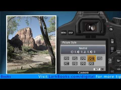 The Picture Styles on the Canon EOS Rebel T2i / EOS 550D