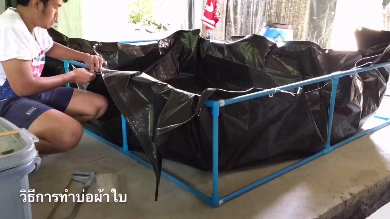 วิธีทำ บ่อผ้าใบขนาด 3x3 M เลี้ยงกุ้งก้ามแดง [Make is Me] by BOOMz Crayfish EP.16