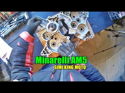 Minarelli AM5 Assembly