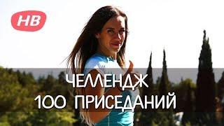 ПРИСЕДАНИЯ 100 РАЗ ЧЕЛЛЕНДЖ. Happy Body