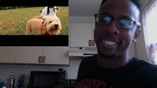 Baixar - My Reaction To Big Baby D R A M Broccoli Feat Lil Yachty Official Music Video Grátis