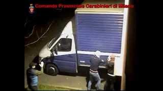Arrestata la banda delle bici di lusso - Carabinieri Sesto e Milano