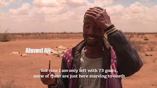 Responding to the drought in Somalia