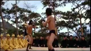 Lý Tiểu Long vs Hồng Kim Bảo - Long Tranh Hổ Đấu