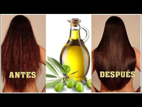 Aceite de oliva para el cabello danado