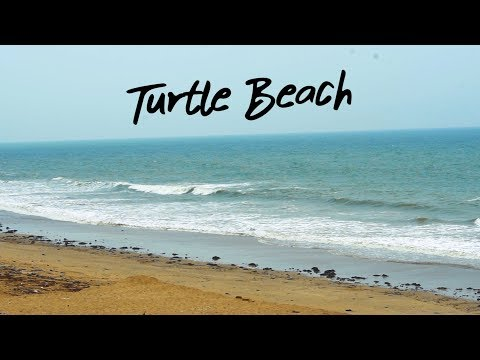 TURTLE BEACH KA