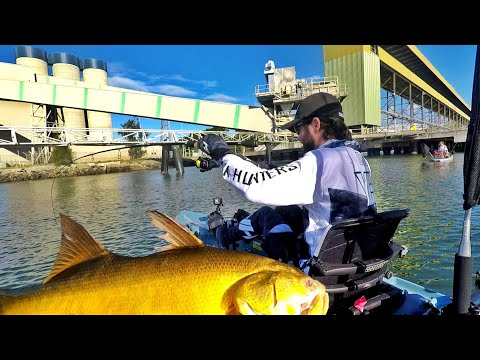 WILD THREADFIN And SNAPPER FISHING Brisbane River | Yak Hunters Australia Part Two | CoastfishTV