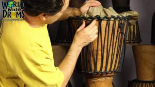 Djembe Repair & Rehead - Positioning Goat Skin on Djembe Drum