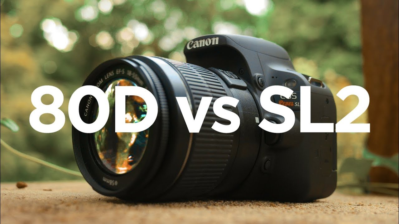 Canon SL2 (200D) vs 80D - Which Canon DSLR should you buy? - YouTube