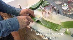 How To Make |  Aloe Vera Hand Sanitizer