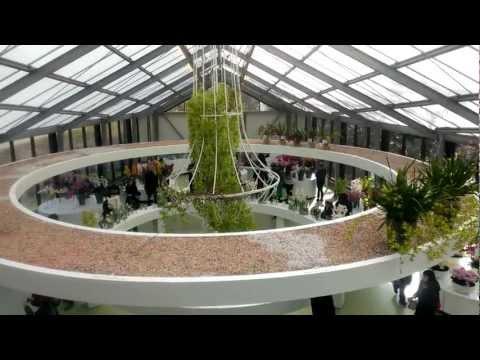Нидерланды - Keukenhof - Парк цветов - Галерея Биатрикс - Вид сверху