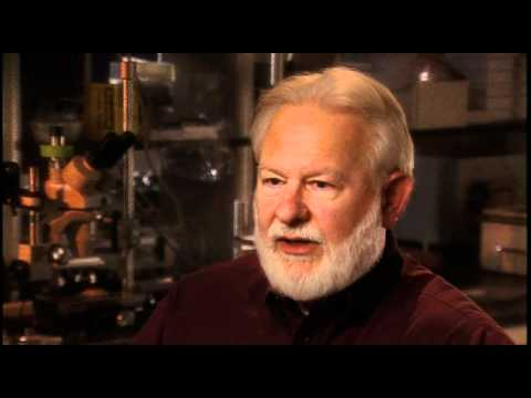 David Nichols: The difference between chemistry and medicinal chemistry or pharmocoloy