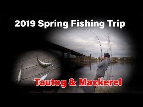 2019 Fishing Trip - Tautog & Mackerel 돌돔, 고등어