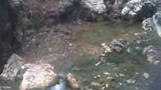 aguas termales estado sucre venezuela