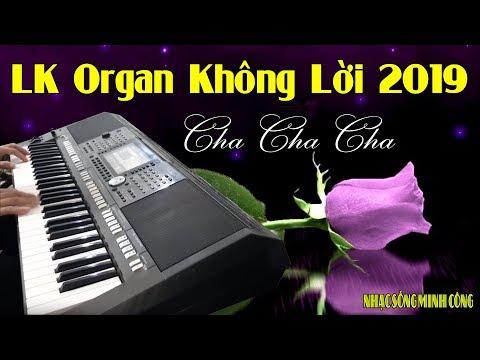 Nhạc Sống Organ Cha Cha Cha Không Lời Mới Nhất || Càng Nghe Càng Say