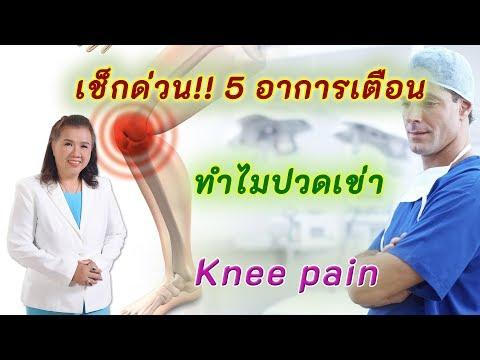 ทำไมปวดเข่า 5อาการเตือน ต้องรีบเช็กด่วน | knee pain | พี่ปลา Healthy Fish