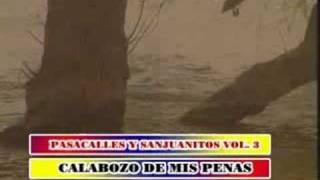 sanjuanito calabozo de mis penas musica ecuatoriana  djrally73