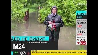 Фото За сутки в столице может выпасть три четверти месячной нормы осадков - Москва 24