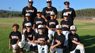 Cepeda Bulls First 8U Baseball Tournament - Labor Day Weekend 2015