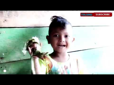 Makanan Khas Daerah Nangroe Aceh Darussalam Youtube