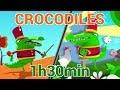 Histoires de Crocodiles - Les Patapons