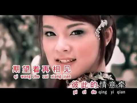 Download Angela   Yuan