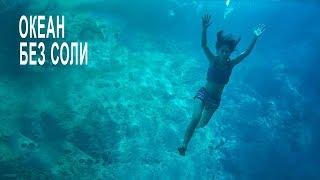 Что будет если ВСЯ морская вода станет пресной?