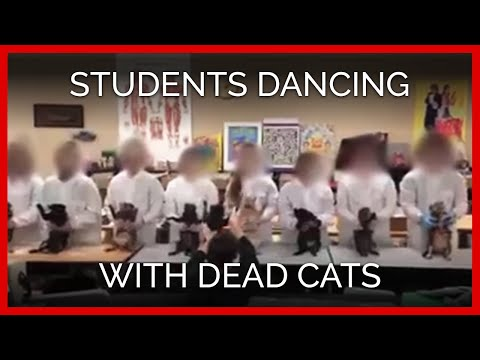 Students Dancing With Dead Cats