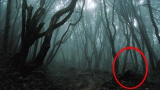 Exploring Haunted Forest At Night (warning)