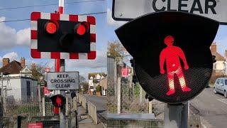 *Halogen Pedestrian Lights* South Woodham Ferrers Level Crossing, Essex