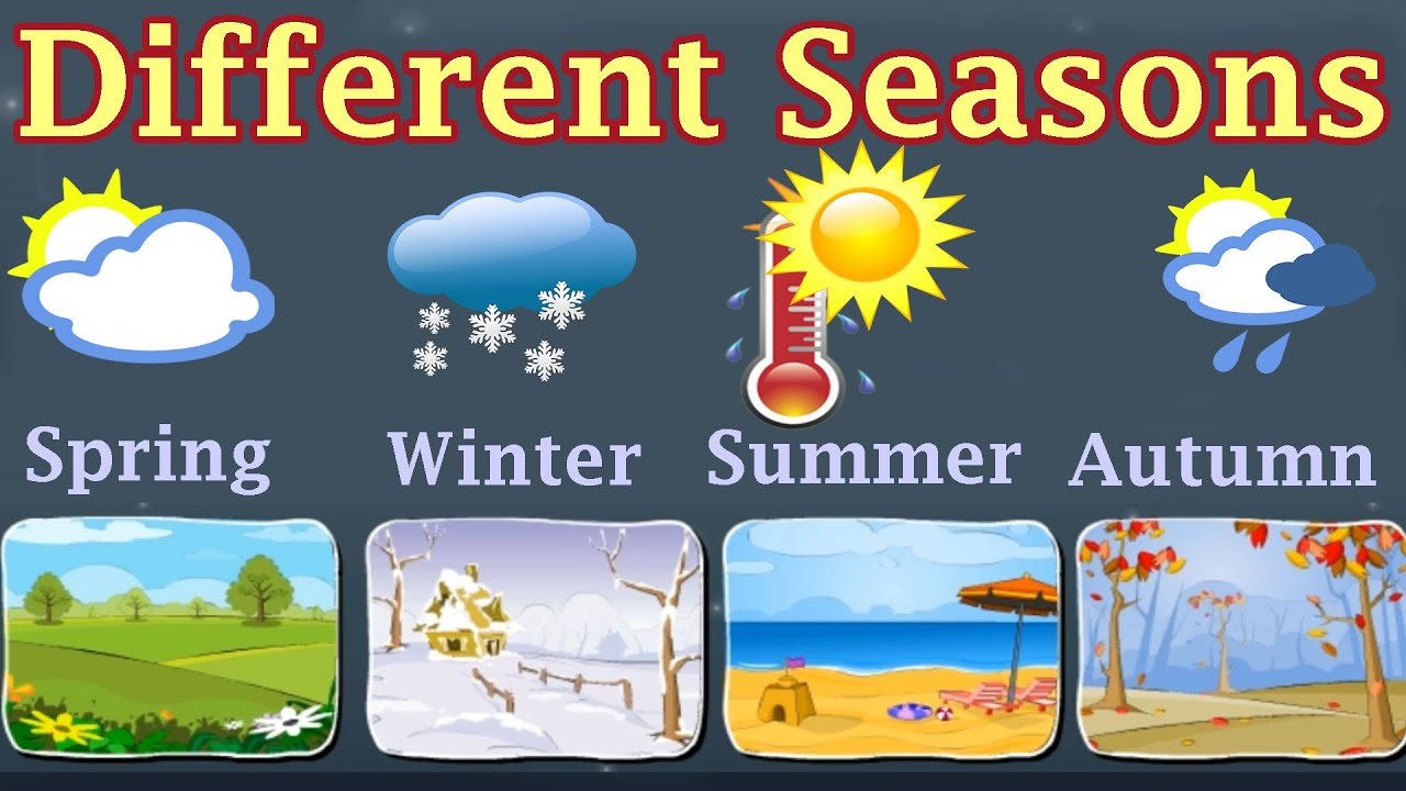 Weather different seasons learn about autumn winter spring summer preschool activity youtube also rh