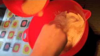 Carrot Muffins (cooking Cooper 001)