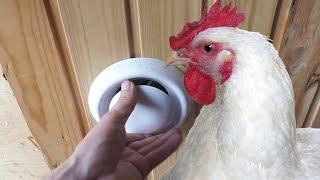 видео Вытяжка своими руками в курятнике: как сделать из пластиковых труб