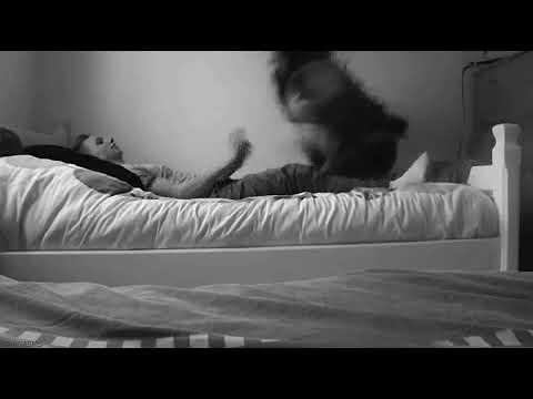 Гифка парень и девушка обнимаются в кровати